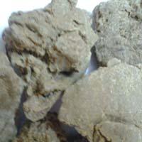 Moringa Seed Oil Cake