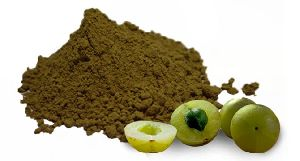 Natural Amla Powder(Indian Gooseberry) Exporters