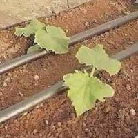 Inline Drip Irrigation Pipes