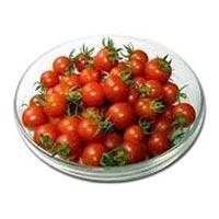 Fresh Cherry Tomato