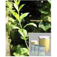 Momordica Charantia Fruit Extract