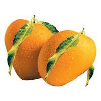 Fresh Mangoes