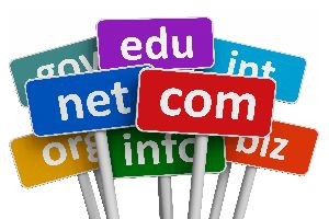 Domain Name Transfer