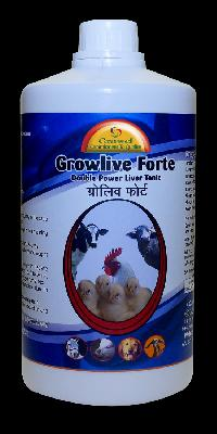 Double Power Liver Tonic for Poultry
