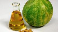 musk melone seed oil