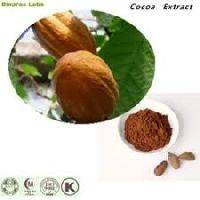 Cocoa Seed Extract