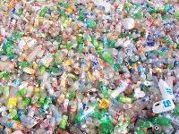 Plastic Pet Scrap