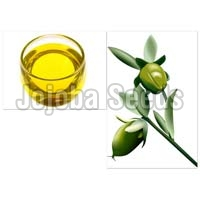 Jojoba Seeds Oil