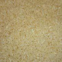 Sona Masuri Steamed Rice