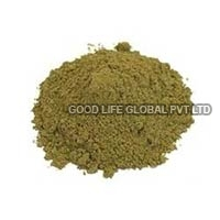 Tulsi Powder Manufacturers Suppliers Amp Exporters In India