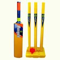 Plastic Cricket Bat Set