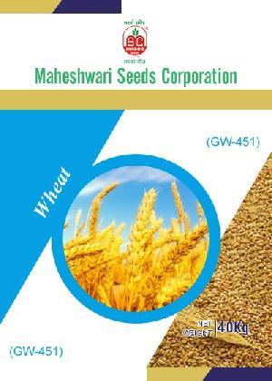 GW-451 Wheat Seeds