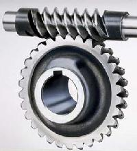 Automotive Worm Gear