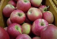 Fresh American Kashmir Apple