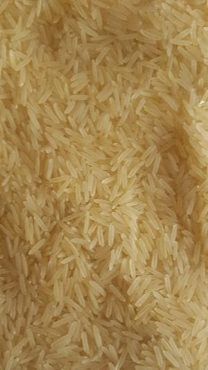 Pusa Basmati Parboiled Golden Rice (Sella)