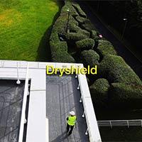 Drysheild Membranes