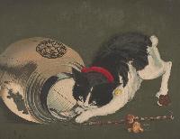 Cat With Lantern