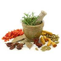 Ayurvedic Herbal Extracts