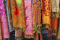 Indian Shawls