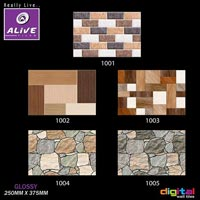 Digital Glossy Elevation Wall Tiles (250mmx375mm)