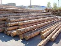 Nilgiri Wood Poles