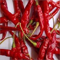 Red Chilli (teja)