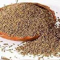 Cumin Seeds (afganistan)