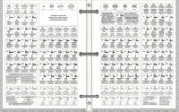 Looseleaf Page Size Laminated Periodic Table