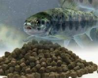 Aquaculture Fish Food