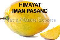 Fresh Himayat Mango