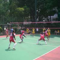 Volleyball Court Synthetic Flooring Surface Installation Services