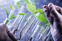 Agriculture Bio Chemical