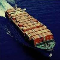 Import Export Consultant