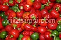 Fresh Cherry Pepper