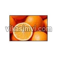 Fresh Valnecia and Naval Oranges