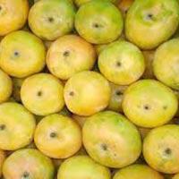 Sindhooram Mango