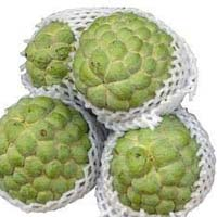 Fresh Custard Apple