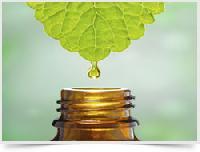 stevia liquid extract