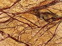Designer Rainforest Golden Marble Stone