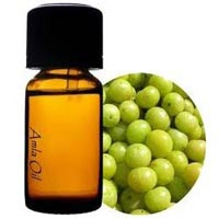 Gooseberry Oil