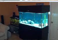 Indoor Aquarium Stands