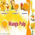 Golden Yellow Mango Pulp