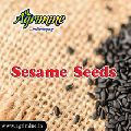 Natural Black Sesame