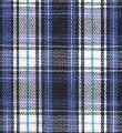 Yarn dyed medium check fabrics