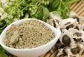 Moringa drumstick Seed Powder