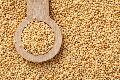 Natural Amaranth Millet Seed