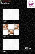 Ceramic Wall Tiles 300x450