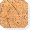 Forest Gold Antique Finish Marble