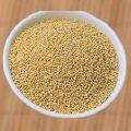Barnyard Millet Seeds