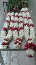 Tuberose Flower Garland